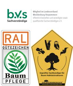 Dipl.-Ing Jana Schröder RAL-zertifiziert und geprüfte Baumsachverständige